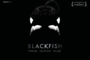 Movie Poster Black Fish